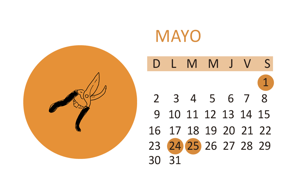 Calendario vitivinicola mayo 2021